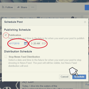 Screenshot of Facebook scheduled post options